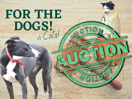 For The Dogs Auction Lots!