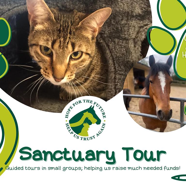 Sanctuary Tours