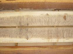 post oak tiger stripe.jpg