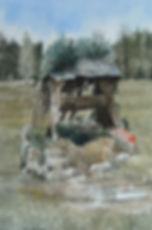 Copy (2) of puits6.jpg