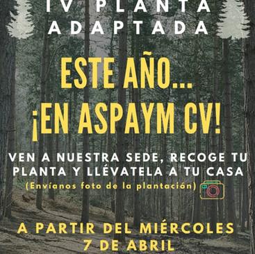 ASPAYM CV y X Frágil València celebran una «Plantà Adaptada» diferente debido a la COVID-19