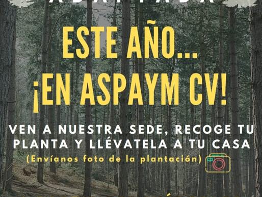 """ASPAYM CV y X Frágil València celebran una """"Plantà Adaptada"""" diferente debido a la COVID-19"""