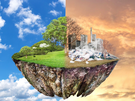 La teoria della decrescita: chimera o sogno concreto? (pt.2)