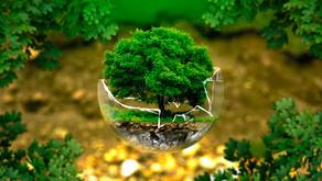 La sfida ecologista dell'Unione