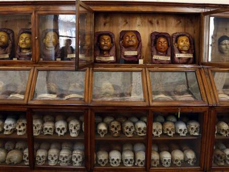 Museo Lombroso: le radici dell'antropologia criminale