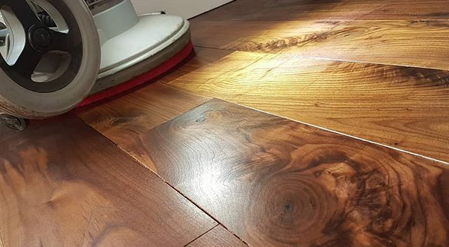 Walnut is coming on. Lounge magic oiled