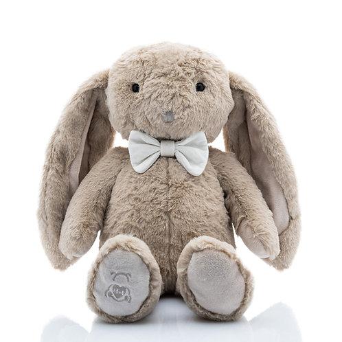 Clover the Heartbeat Bunny Rabbit