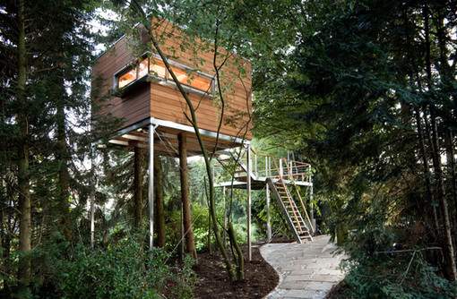 A retreat amongst the trees.Architecture photography by Alasdair Jardine