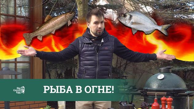 Битв рыб в огне!