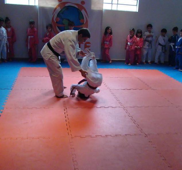 judo4.jpg