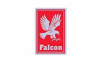 Falcon_edited_edited.jpg