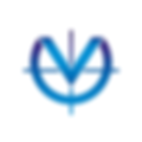 Vision logo V.png
