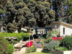 Cottage Garden - RELISH Cottage