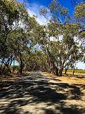 Wine Walking Trail backroad Karawatha Co