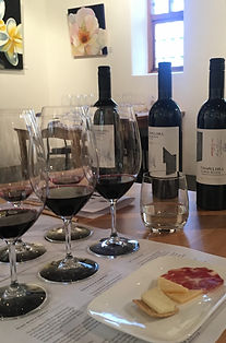 Chapel Hill Wines Icon Tasting McLaren V