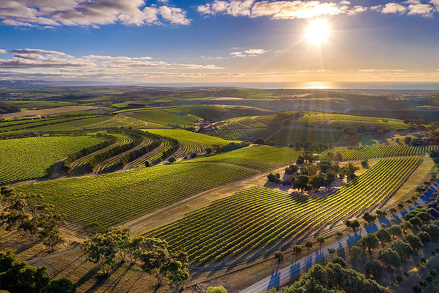 McLarenVale and coast by Duy Huynh - DUY