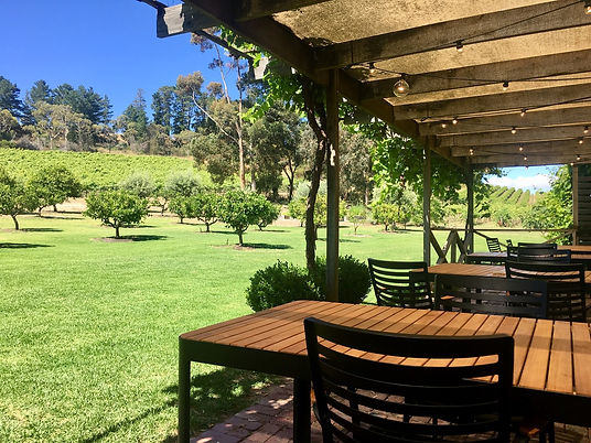 The Currant Shed Restaurant McLaren Vale