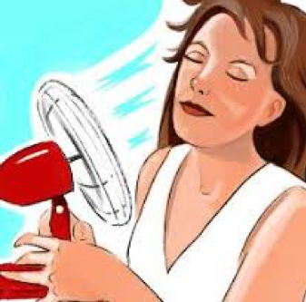 Hot Flashes Heating up your Summer?
