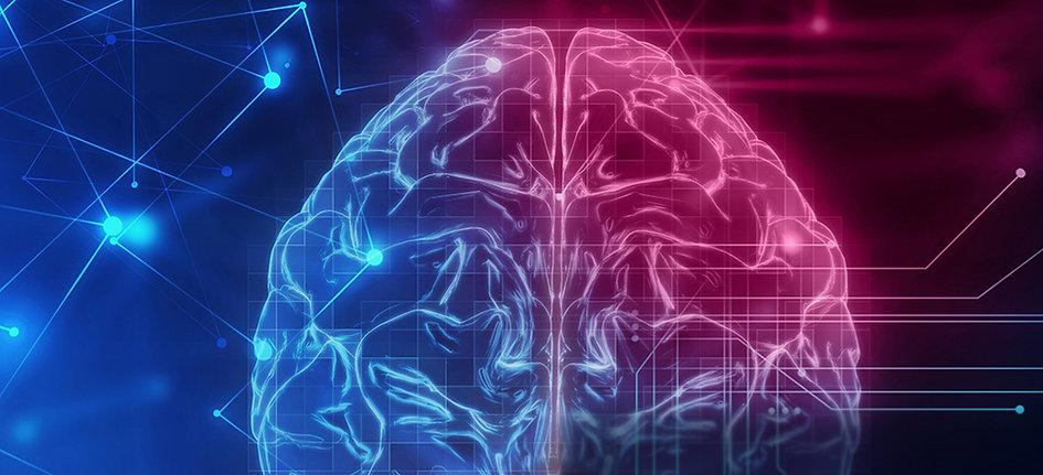 Header_Neurology-2_edited.jpg