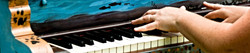 Colorful piano keyboard