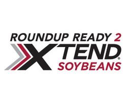 XtendFlex Soybeans 2