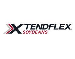 XtendFlex Soybeans