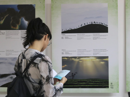 """The Exhibition of Photographs """"Tea, Love and the World"""" at the Faculty of Political Science"""