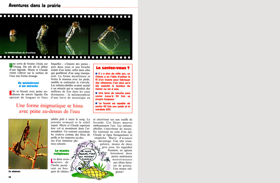 FLEURUS & TÉLÉRAMA JUNIOR Microcosmos
