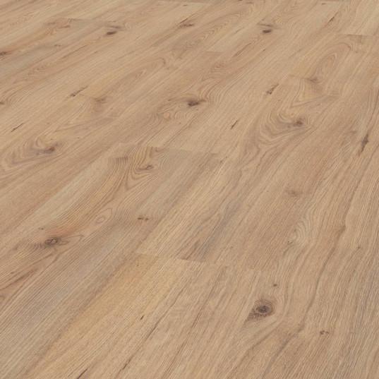 Milenium Oak D-3530.jpg