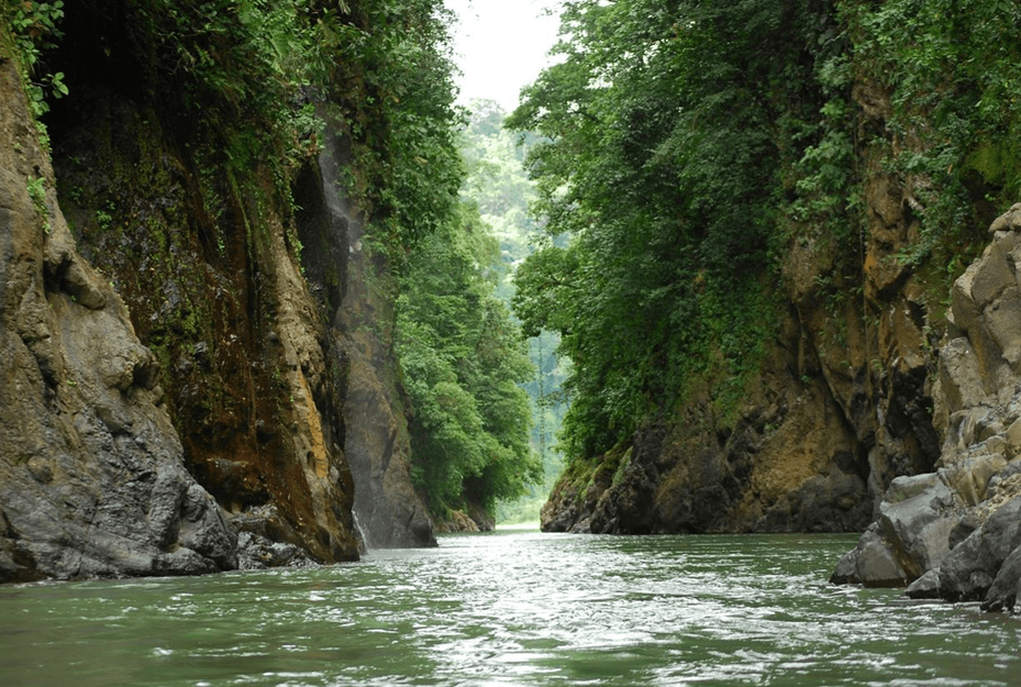 Pacuare Fluss