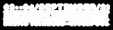 ESS Logo Extra-51.png