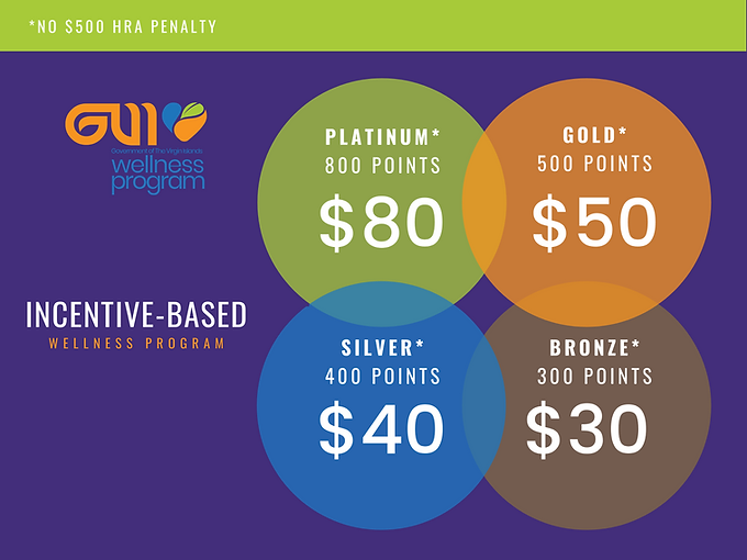 GVI INCENTIVE PROGRAM (1).png