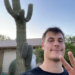 Tausche Tannenbaum gegen Kaktus