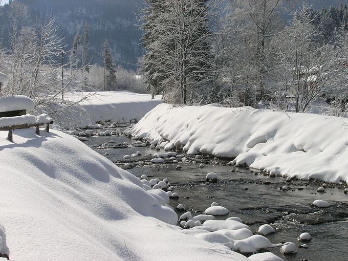 winterbilder 544-buttonu59899-fr