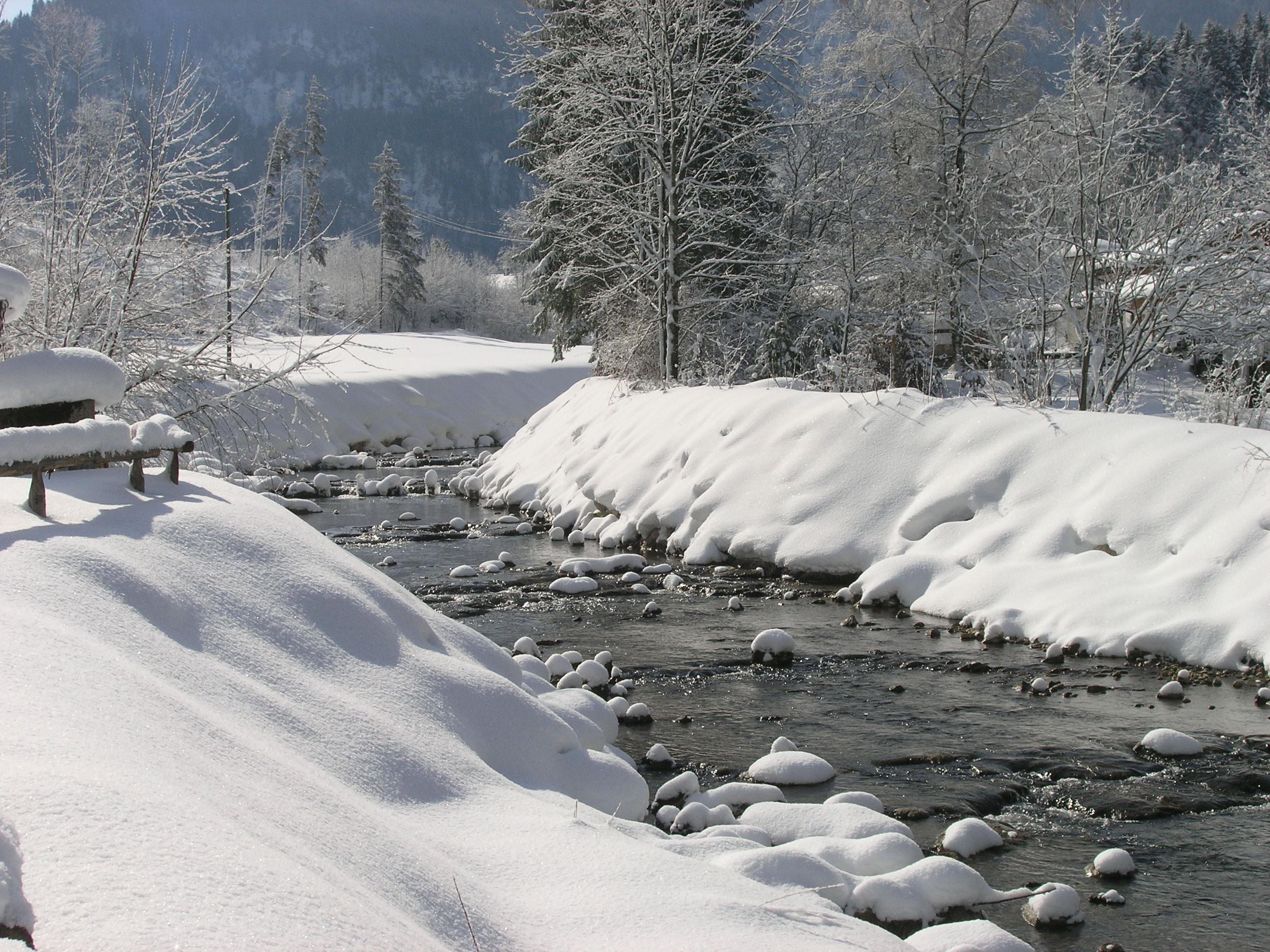 winterbilder 544