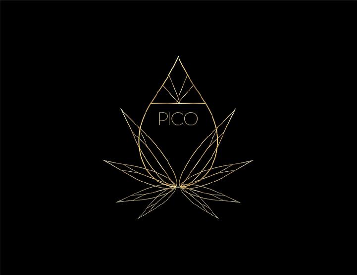 PICO_Logos-03.png