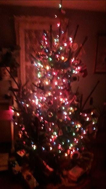 chrismas-tree2018inside_edited.jpg