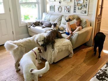 Family Setting