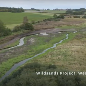 Acres Floodplain Restoration: is this Norfolk's 4th rewilding project?