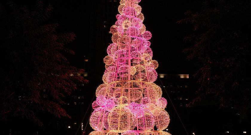 Grand Park - pink sphere tree.jpg
