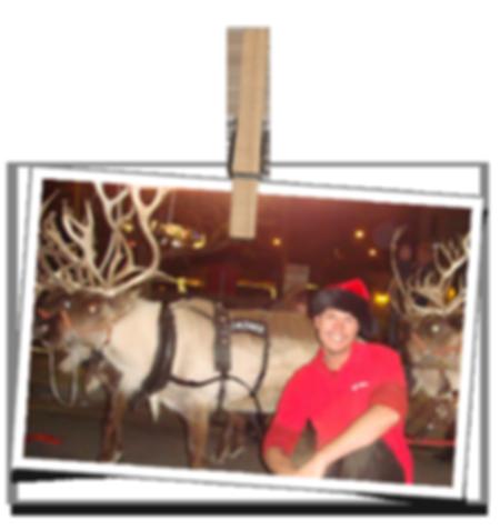 St. Nick's Christmas Ligting & Décor Fonde
