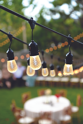 Tivoli Stringer Lights - Sockets Only