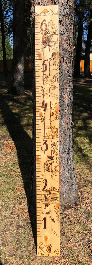 Woodland Growth Chart