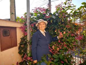 Irmã Maria Dorotéia - 50 Anos de Vida Religiosa Consagrada