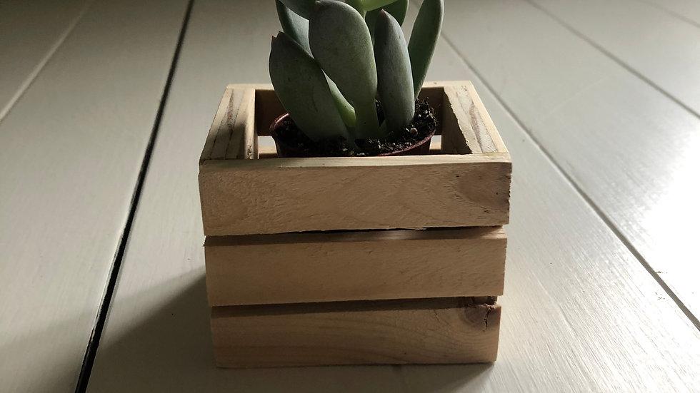 MINI Pallet Style Planter Box