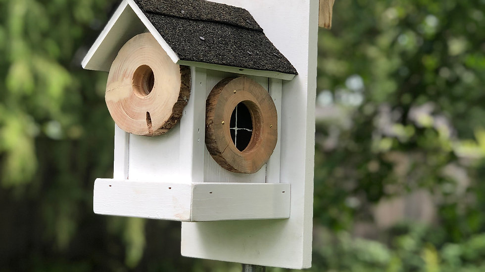 Signature birdhouse w/backboard