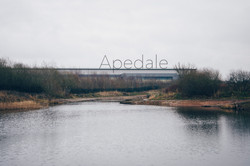 Alistair Grimley - Apedale Cover