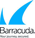 logo_barracuda_secondary_strapline_cmyk.