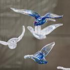ציפורים (6).jpg