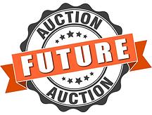 Future Auction.png
